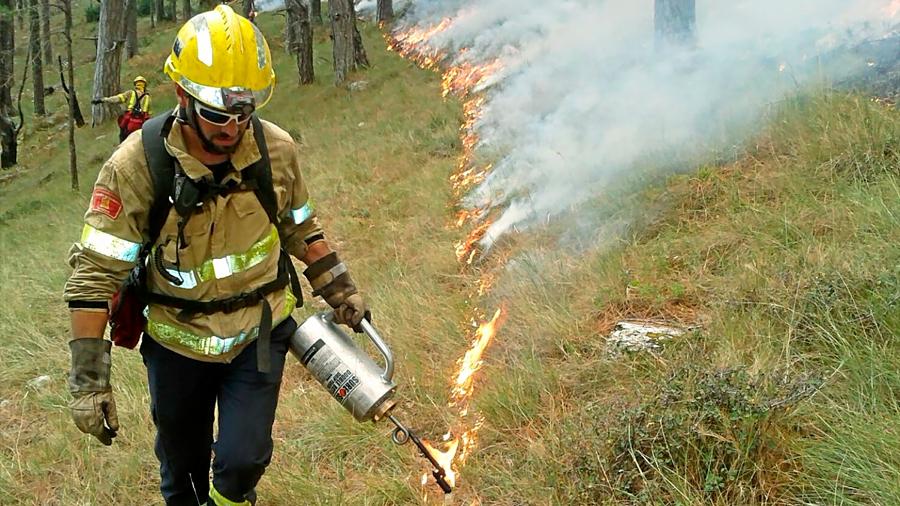 Proponen quemas controladas para evitar incendios forestales como los de Australia