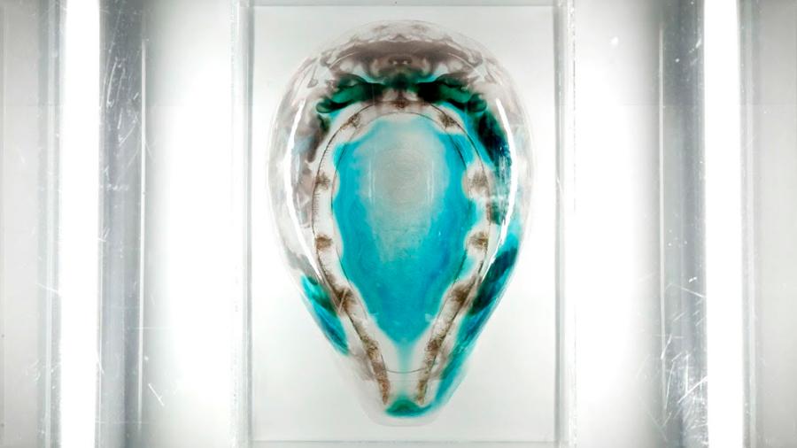 Logran impresión 3D con incorporación de organismos vivos