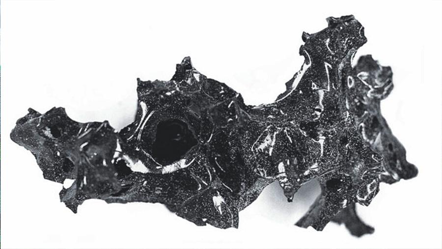 Hallan cerebro vitrificado de víctima de erupción del Vesubio