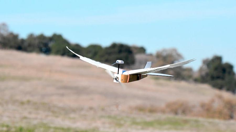 Logran que un robot doble al volar las alas como un pájaro y eso podría revolucionar la aviación