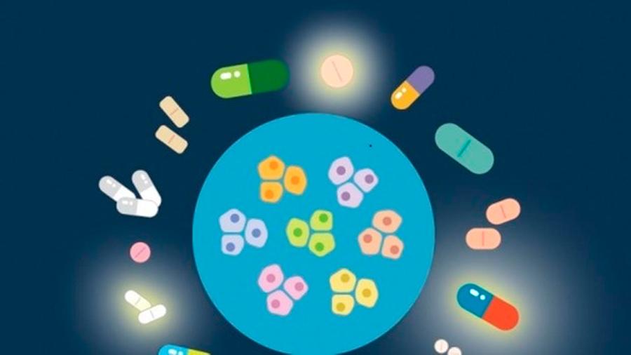 Descubren que decenas de medicamentos no oncológicos pueden eliminar células cancerosas
