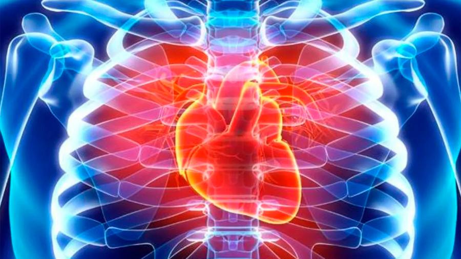 Científicos japoneses logran primer trasplante de células madre para tratar infartos