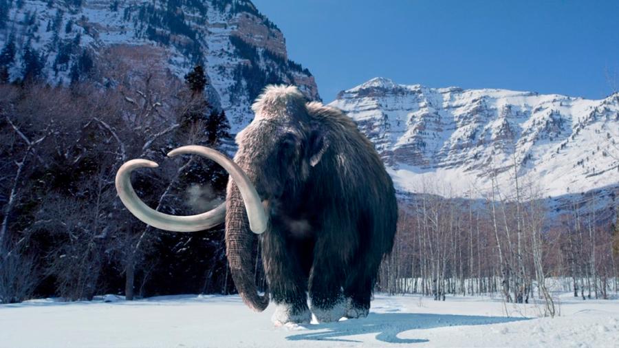 Resucitan genes mutados de un mamut en isla del Ártico
