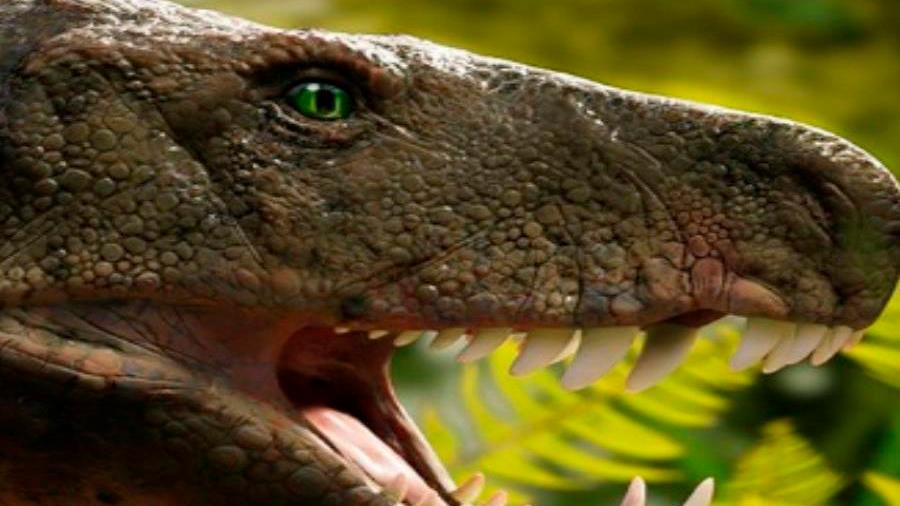 """Hallan un extraño reptil prehistórico en Brasil y lo definen como una """"verdadera trituradora de huesos"""""""