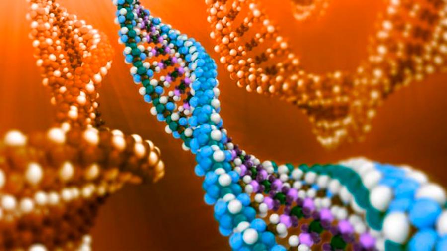 Ahora los científicos podrán crear proteínas con funciones específicas