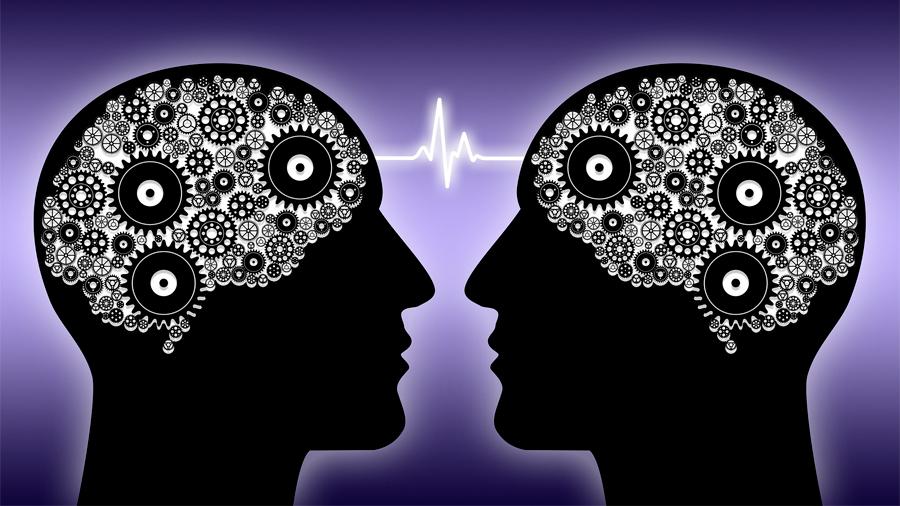 Descubren la sede de la consciencia en el cerebro