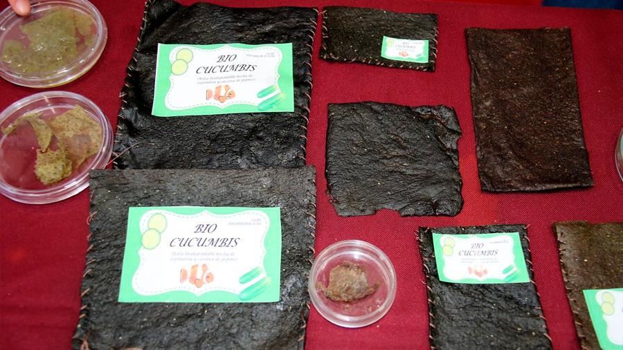 Elaboran politécnicas bioplástico con cáscara de pepino