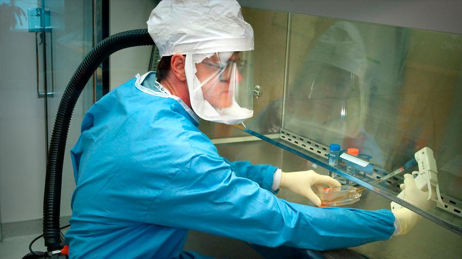 Científicos intentan crear una copia sintética del coronavirus chino a fin de acabar con él
