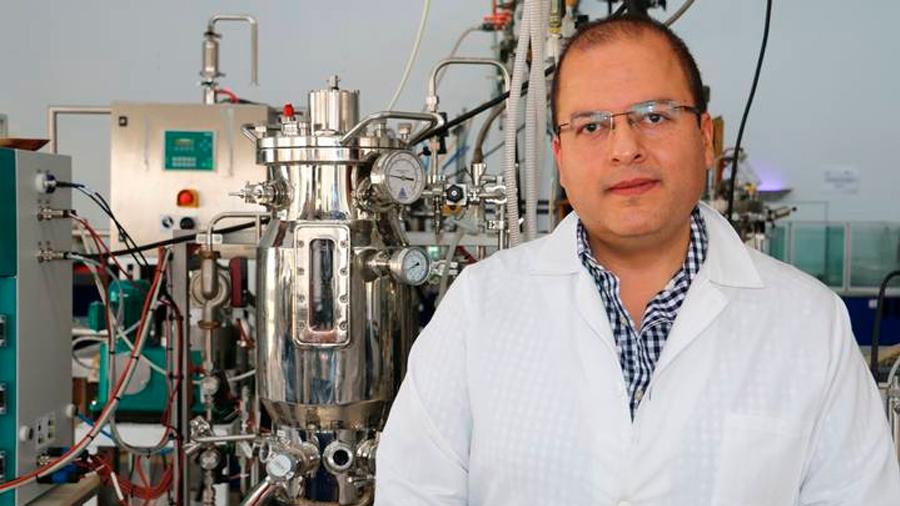 Desplegando proteínas en la superficie de hongos filamentosos para aumentar su utilidad industrial