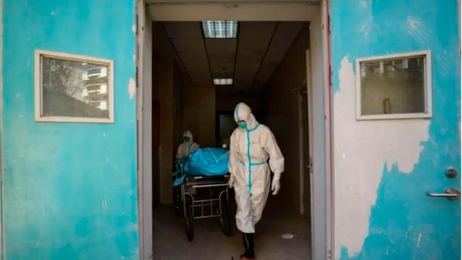 """Fundamental conocer la identidad del """"paciente cero"""", el primer humano en infectarse con el covid-19"""