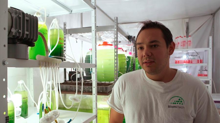 Innovador mexicano crea biorreactores a partir de microalgas que secuestran el carbono atmosférico para purificar el aire