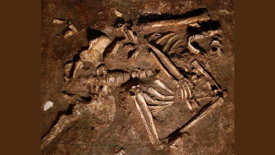 Descubren impresionante esqueleto neandertal en una cueva de Irak