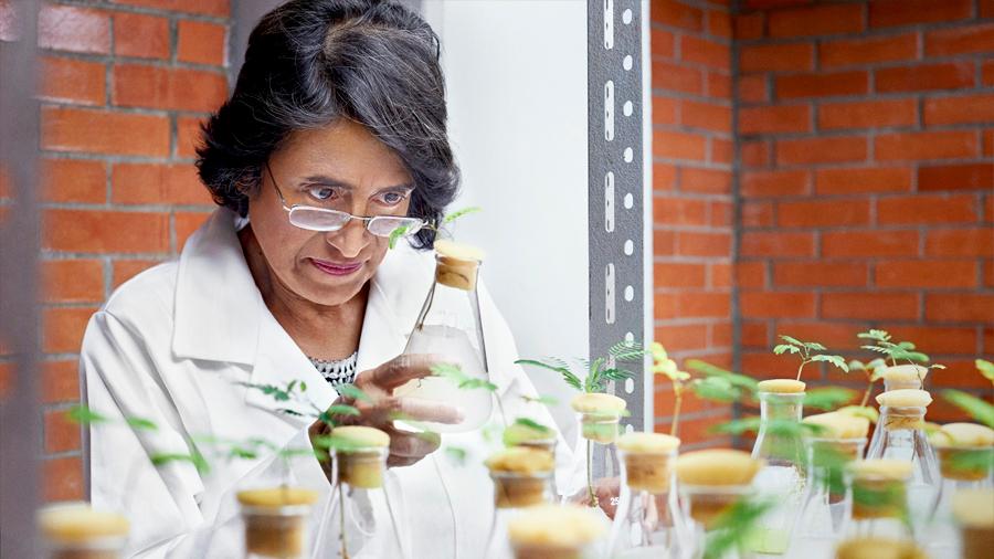 Unesco premia a científica mexicana por estudio sobre las bacterias
