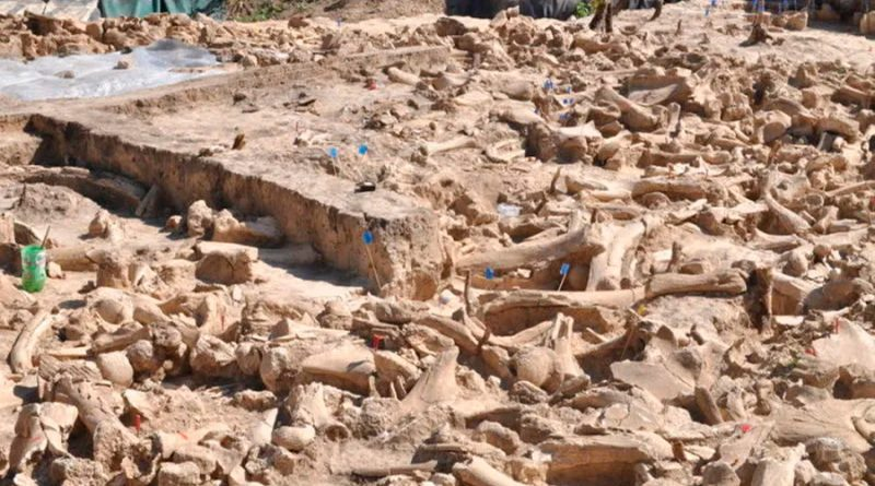 Los científicos descubren una estructura de la edad de hielo hecha de huesos de 60 mamuts