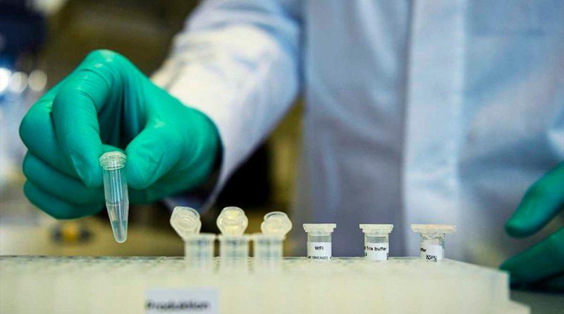 Prueba Rusia en animales una vacuna contra coronavirus