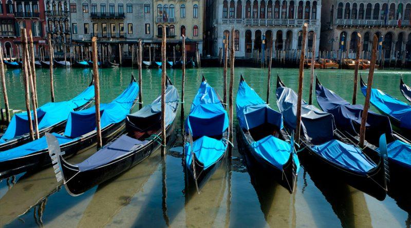 La asombrosa transformación de Venecia: los turistas se van y vuelven los peces a los canales