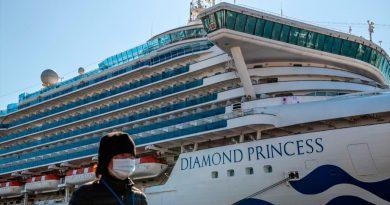 Alarmante descubrimiento a bordo del Diamond Princess: el coronavirus puede sobrevivir en superficies hasta 17 días