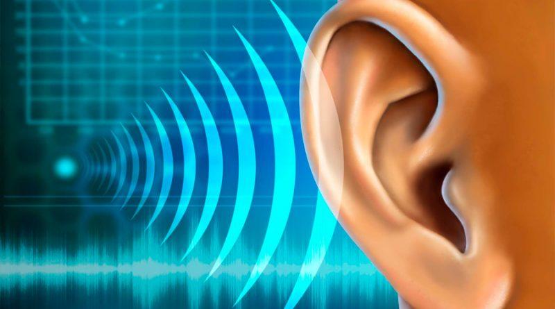 Crean un modelo de nervio auditivo con capacidad humana