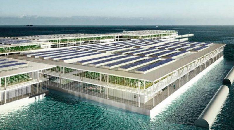 Crean una granja solar flotante que puede producir hasta 20 toneladas de verduras al día
