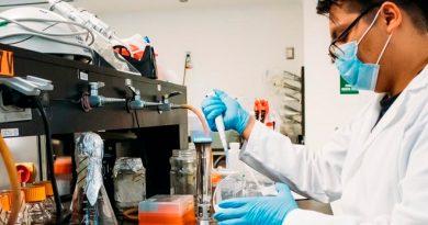 Crean en politécnico mexicano ventiladores mecánicos para pacientes graves de COVID-19