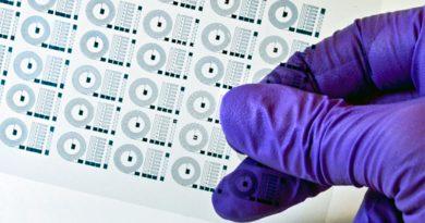 Investigadores del MIT crean implantes cerebrales con polímeros electrónicos flexibles