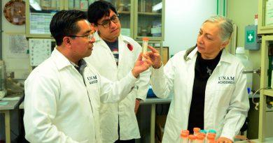 Avanza en la UNAM fármaco contra la enfermedad de Chagas