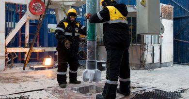 Descubren en el Ártico ruso bacterias que degradan el petróleo