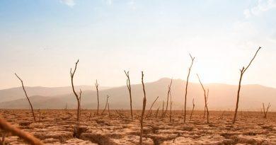 Las 10 mayores amenazas para la humanidad según los científicos