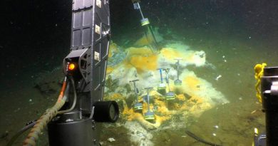 Microbios que mastican etano, descubiertos en respiraderos calientes