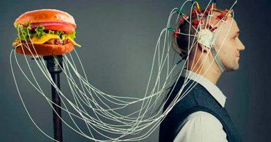 6 efectos negativos de la comida chatarra en tu cerebro