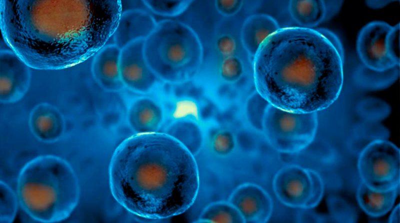 Uso de células madre para combatir COVID-19