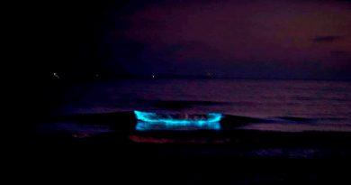 Reportan luminiscencia en costas de Baja California