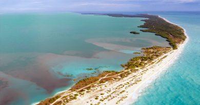 Impactos ambientales en las costas mexicanas