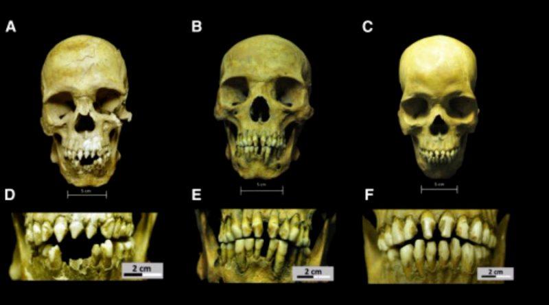 La historia de tres esclavos en el México colonial narrada por sus huesos