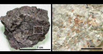 Científicos descubren material orgánico en un meteorito expulsado de Marte