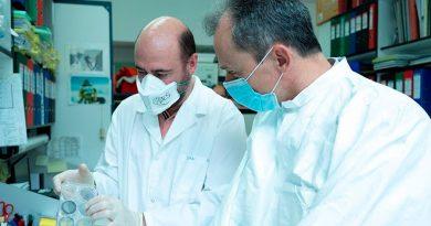 Biotecnólogos españoles comienzan los ensayos preclínicos de un candidato a vacuna