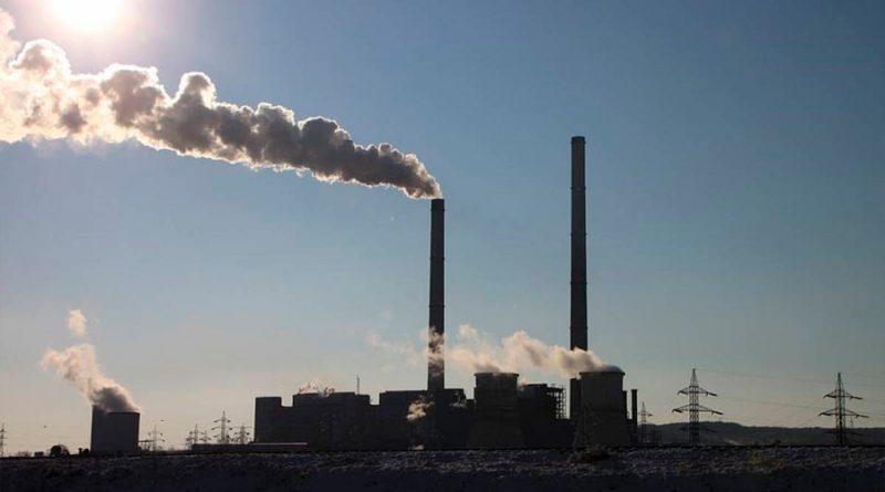 Crean células fotosintéticas artificiales para la fijación del CO2