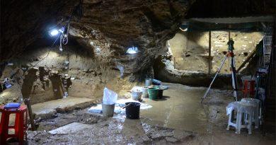 El 'Homo sapiens' estuvo en Eurasia 8 mil años antes, revelan estudios