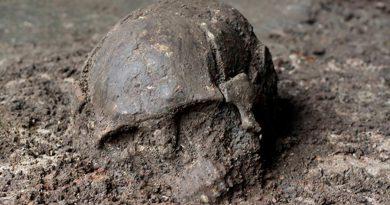 ADN antiguo desvela una importante pieza perdida de la prehistoria humana