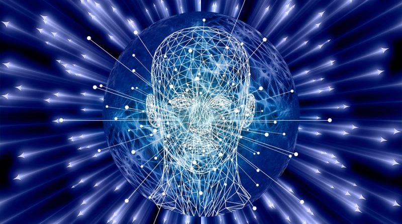 Identificada la zona del cerebro donde reside la inteligencia ejecutiva