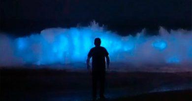 Olas fosforescentes: el aún estudiado espectáculo que ilumina las noches en costas de EU