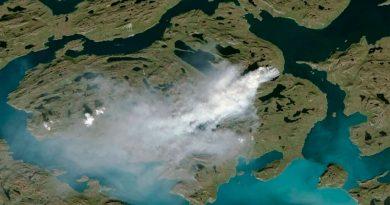 Indicios de incendios 'zombis' en el Ártico