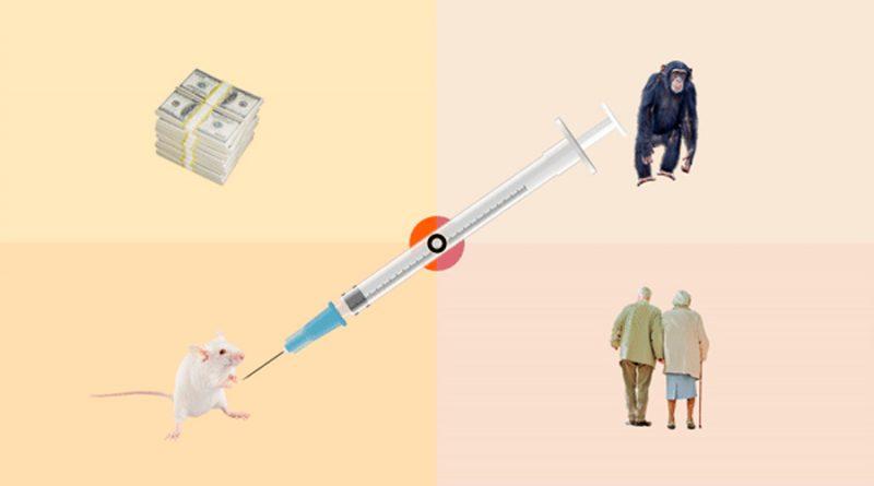 La vacuna contra el coronavirus: una carrera plagada de obstáculos