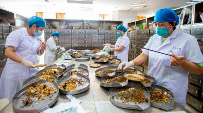Cómo China ahora impulsa el uso de su medicina tradicional ante la pandemia (y con qué eficacia)