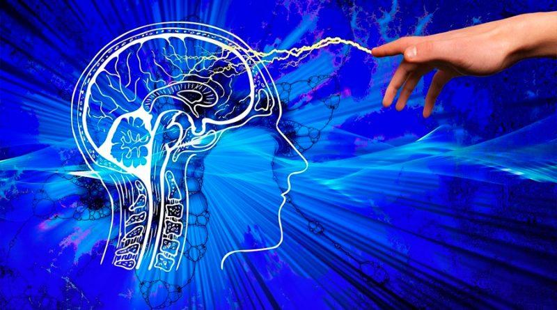 El cerebro puede controlarse con ultrasonidos