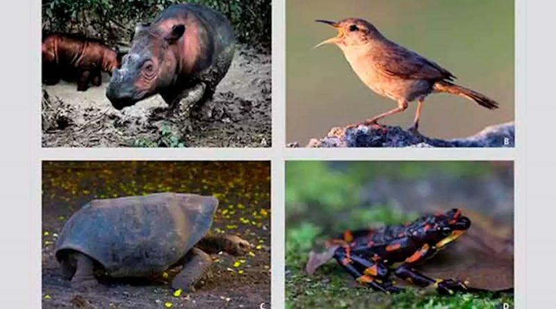 El planeta vive sexta extinción masiva y amenaza a 515 especies de vertebrados: investigador mexicano