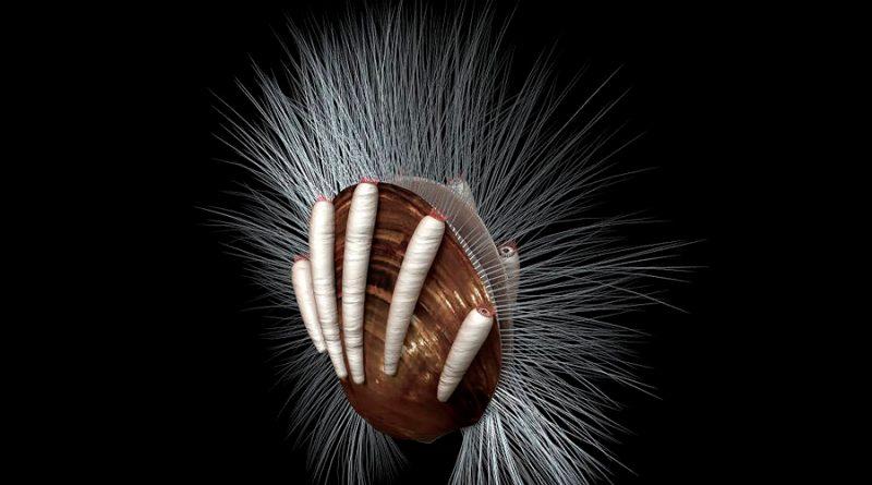 Extraños animales marinos soportaron a los parásitos más antiguos que se conocen