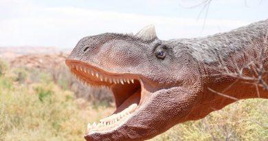 Descubren el último banquete de un dinosaurio de 1300 kilos hace más de 110 millones de años, según lo hallado en su estómago