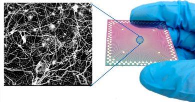 Logran miles de sinapsis cerebrales artificiales trabajando en un solo chip