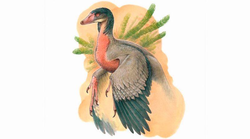 Descubren un pequeño dinosaurio carnívoro con alas que vivió en la Patagonia hace 90 millones de años